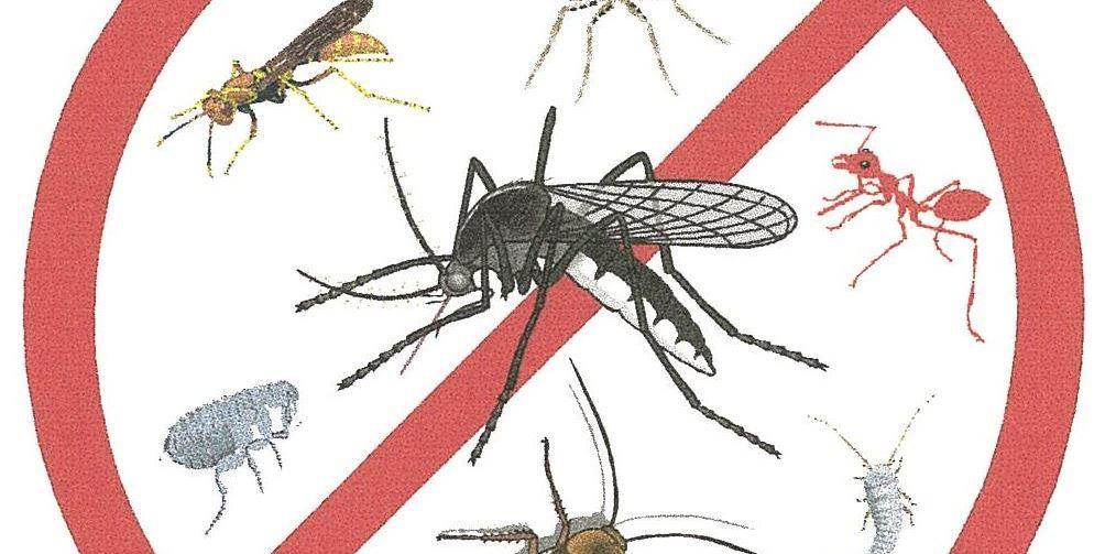 Repelentes de mosquitos efectivos