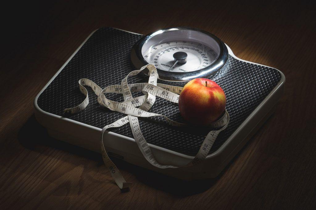 La obesidad y metabolismo