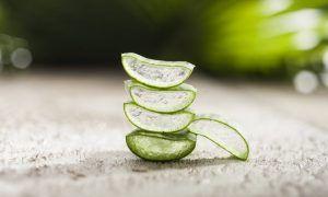 5 usos frecuentes del aloe vera que te sorprenderán