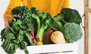 Consumir solo alimentos vegetales