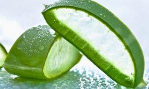 Beneficios de comer Aloe Vera