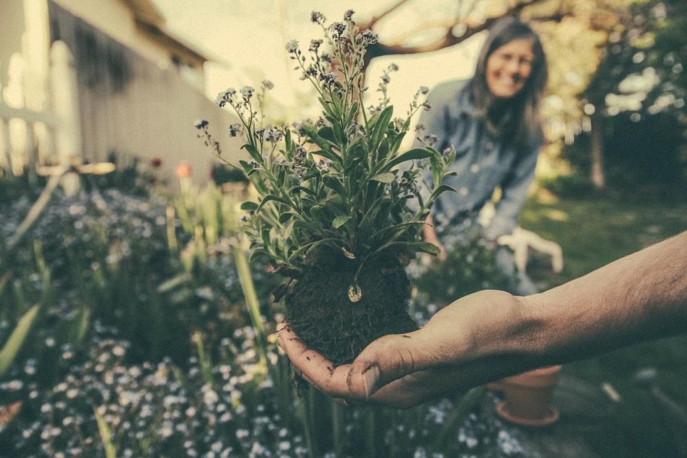 Llevar una vida más ecológica